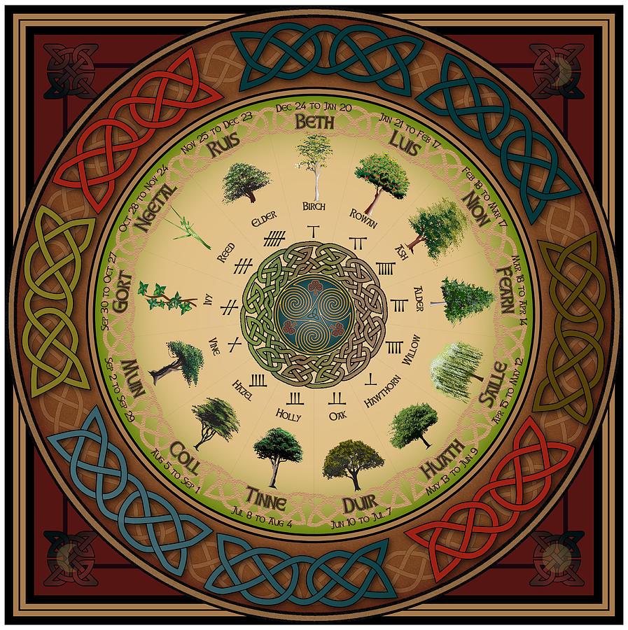 ogham-tree-calendar-ireland-calling